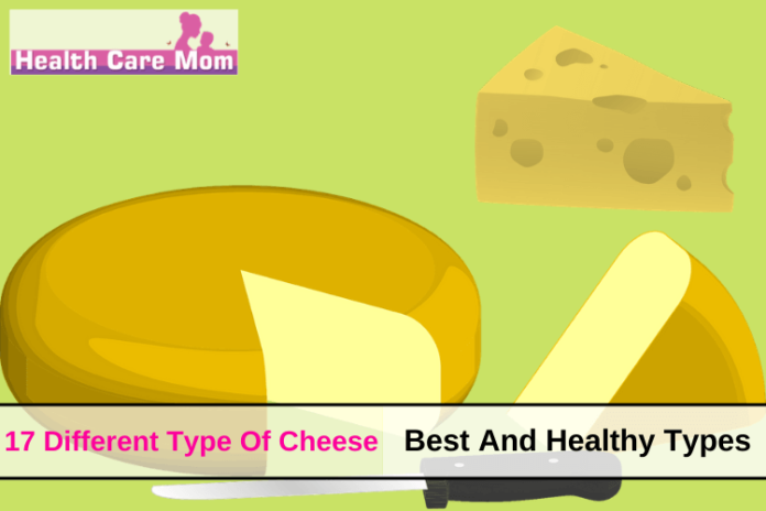 Type Of Cheese